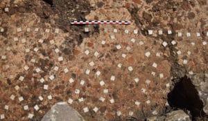 Détail du sol de l'édifice en opus signinum