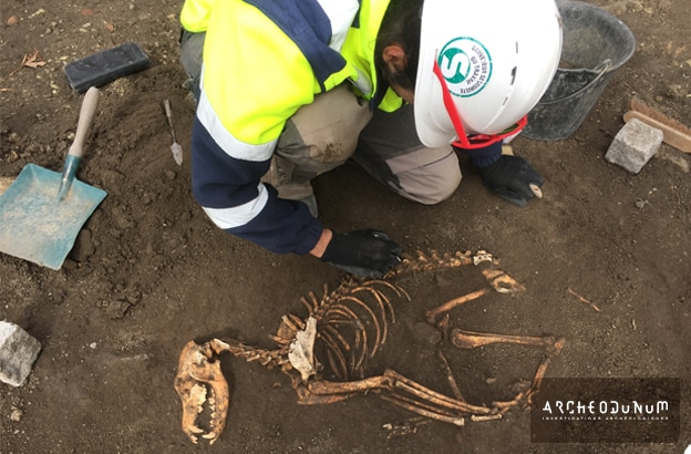 08 – Inhumation d'un chien