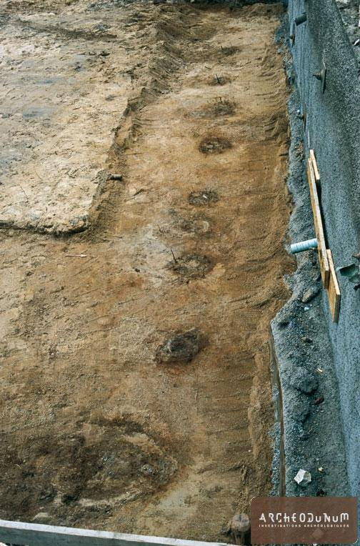 Alignement de trous de poteau formant une palissade ou un aménagement de quai
