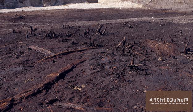 Fig. 2 : Restes organiques dans un paléochenal