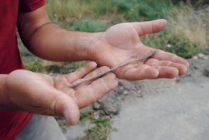 Fig. 5 : Spatule en bronze
